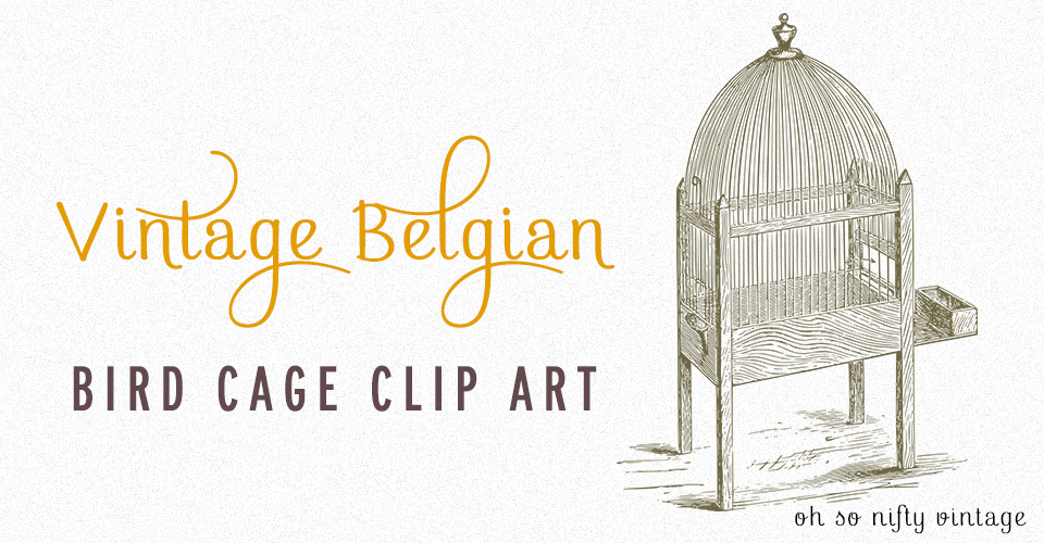 Vintage Belgian Bird Cage Graphic