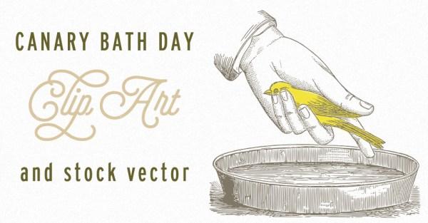 Canary Bath Day Vintage Image