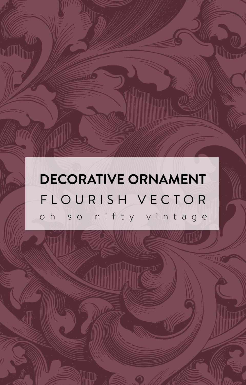 Gorgeous Decorative Ornament Flourish Vector
