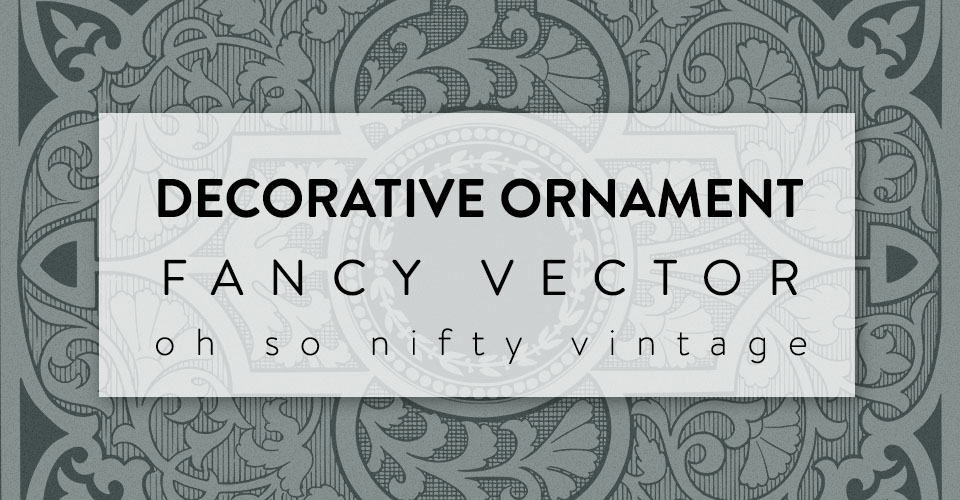 Beautiful Decorative Ornament Fancy Vector