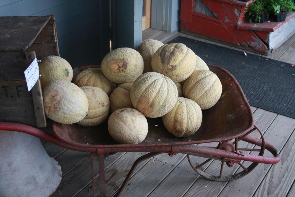 melons in a barrel