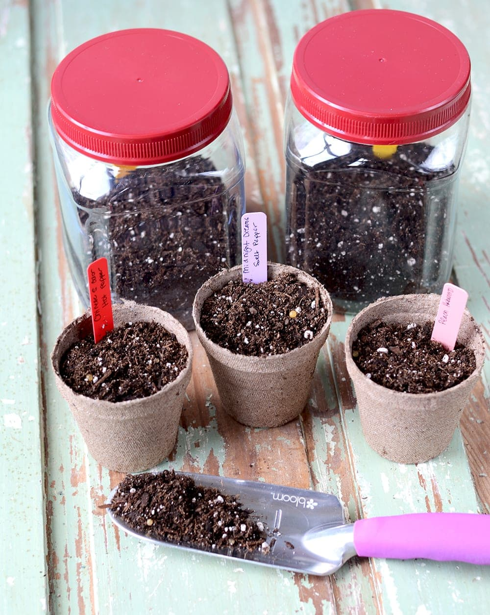 The arrival of spring means its time to start working on your vegetable and herb gardens. Follow these Seed Starting Tips to get started! | vintagekitty.com