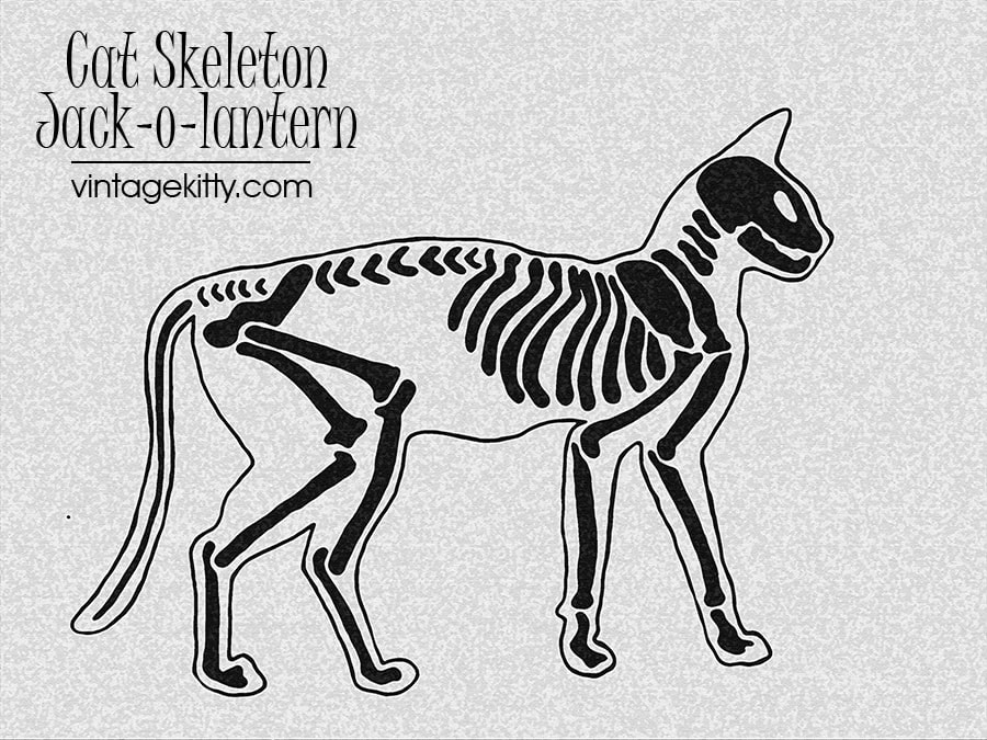 Carve an awesome jack-o-lantern this Halloween! Use this free cat skeleton pumpkin carving pattern to wow trick-or-treaters!