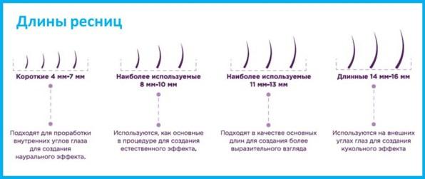 Длины ресниц для наращивания Lash&Go