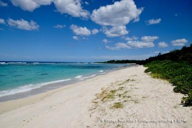 La Cambuse Beach Mauritius