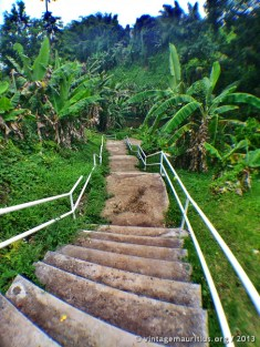 Stairs leading down to the River Bank