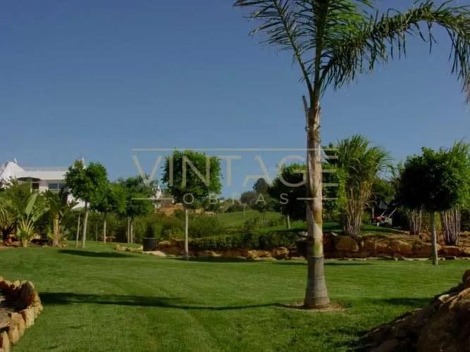 Remodelação de hotel: Execução de jardim