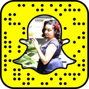 Snapcode for Vintage on Tap