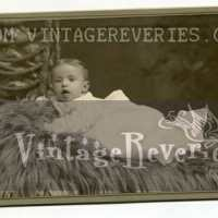 Turn of the century photos by St. Louis Photographers