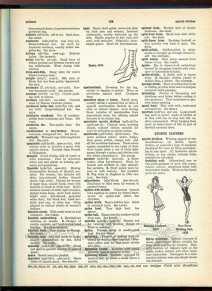 history of swimwear