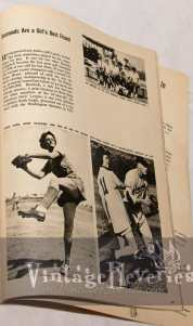 womens baseball history