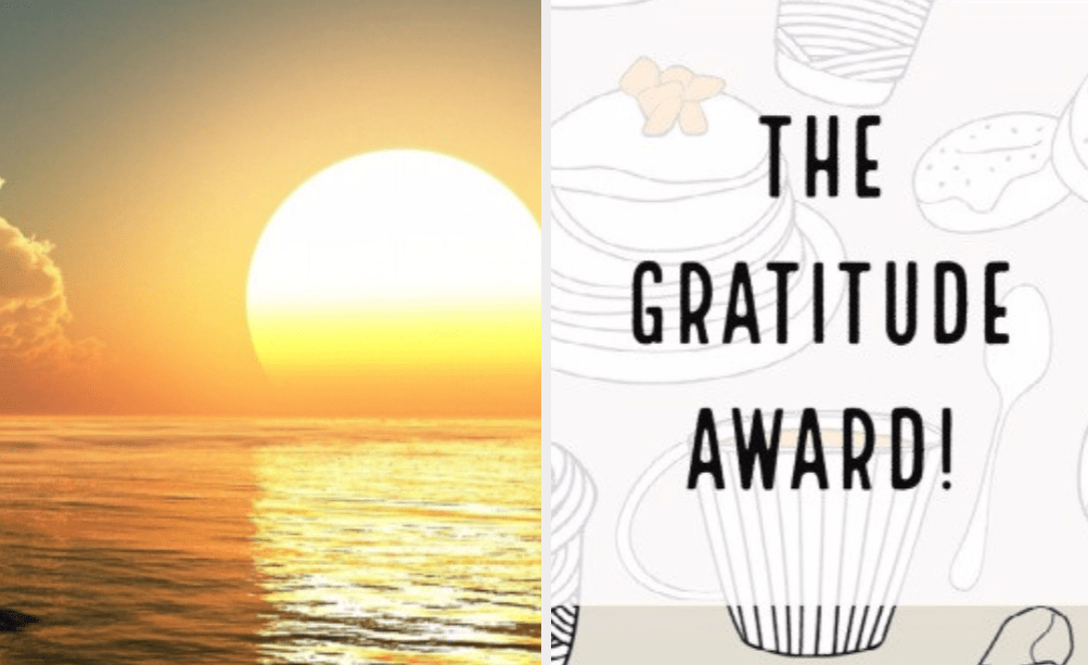 Sunshine Blogger #2 And The Gratitude Award