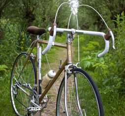 Dutch Local Bike Store bike Stormvogel
