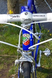 Gios Compact Pro headtube badge