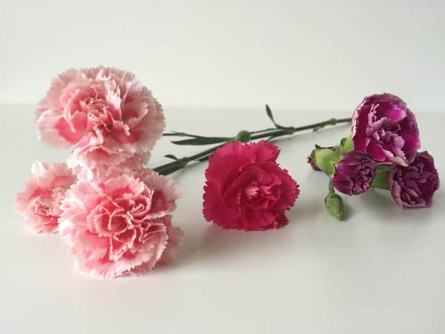 Daphne Rosa flowers as featured on The National Vintage Wedding Fair