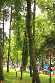 relaxare in parc