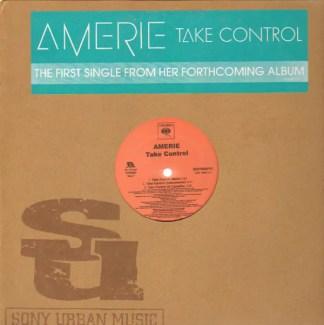 "Amerie - Take Control / That's What U R (12"", Promo)"