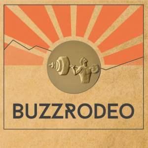 Buzz Rodeo - Sports Vinyl Cover Artwork