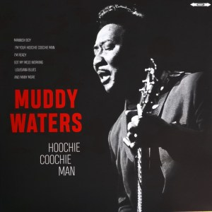 MUDDY WATERS - HOOCHİE COOCHIE MAN - Vinyl, LP, Compilation, 180 grs