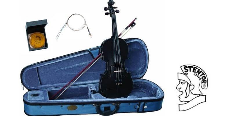 stentor Harlequin violin