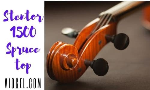 stentor 1500 4 4 violin
