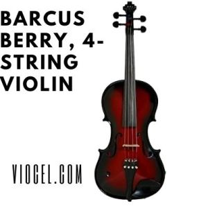 Barcus Berry, 4-string Violin