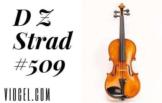 D Z Strad #509