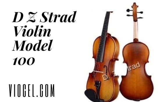 D Z Strad Violin Model 100