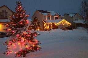 Christmas-lights-+-snow-MAGIC-003