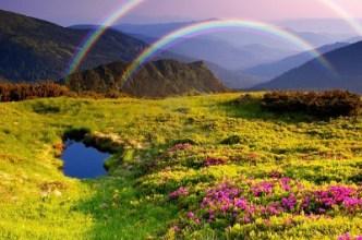 real-life-rainbow-bridge-stories-rainbows-21721187