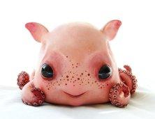 baby_dumbo_octopus_by_santani-d3cq01c