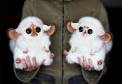 cute-dolls-fluffy-fur-animal