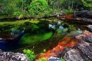 cano_cristales_columbia_river_of_five_colors