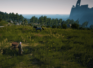 BDO Morino Farm Field Horse Location