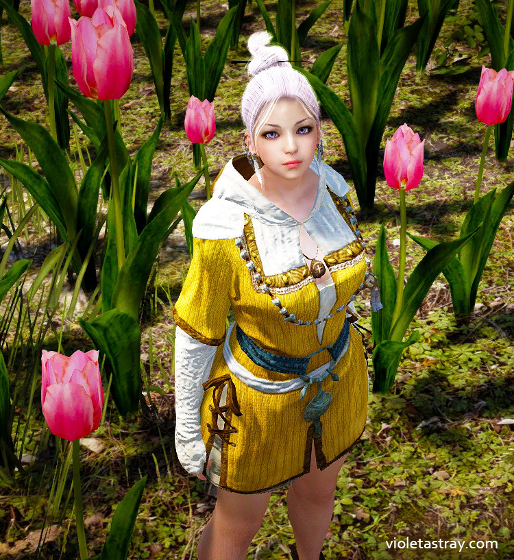Bdo Costumes You Can Craft In Game Violet Astray