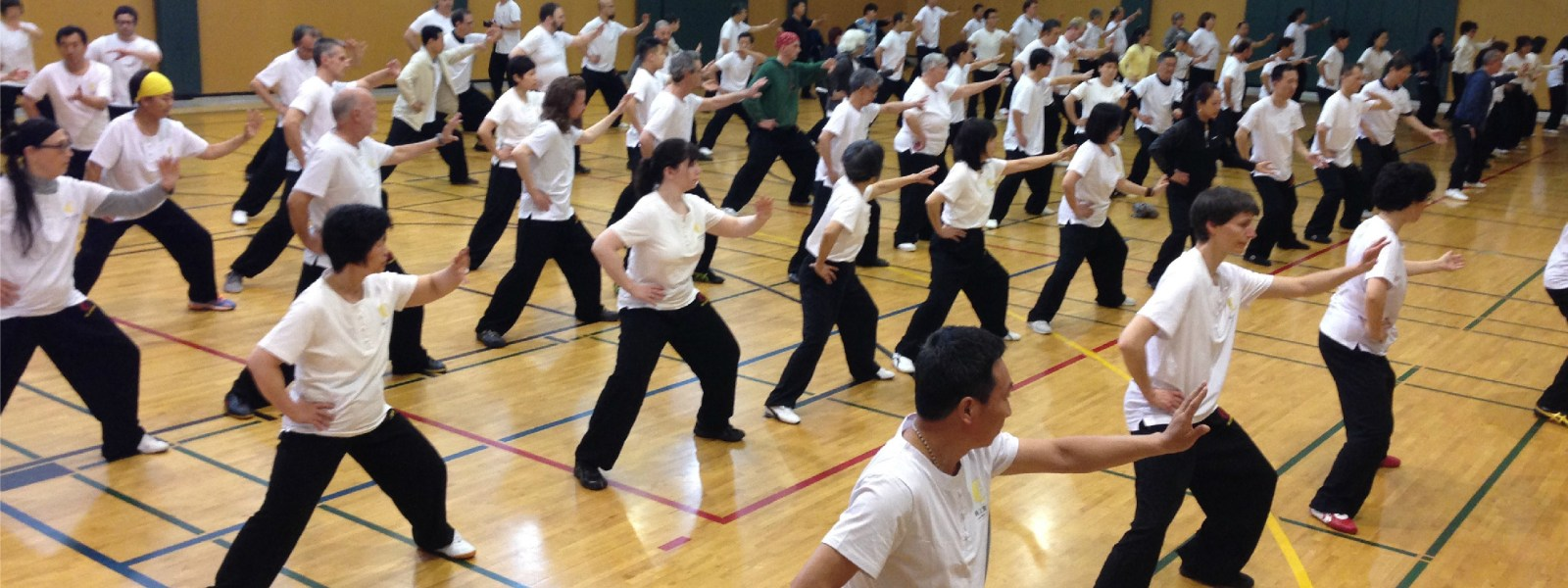 Metarobics and the Future of Tai Chi for Health