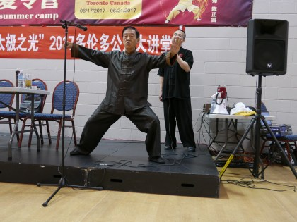 Correct Single Whip demonstrated by Grandmaster Chen.