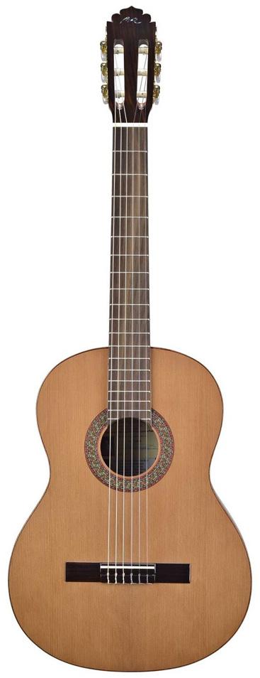 GuitarraC1-T