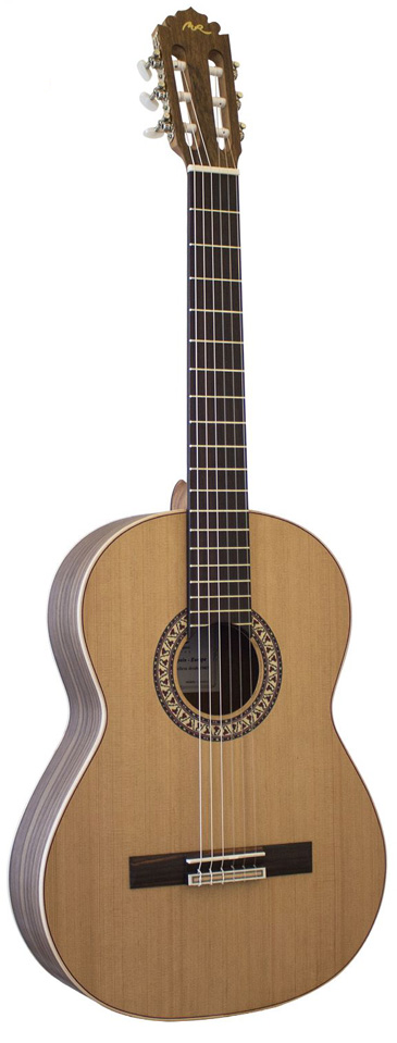 GuitarraC11-T
