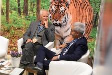 Indien setzt sich verstärkt für den Schutz von Tigern ein
