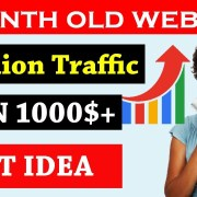 Website ideas For Beginners | Rank a Website Fast in Hindi Video Tutorials 2019