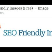 SEO Plugins for Wordpress to Bring Website on Top Rank