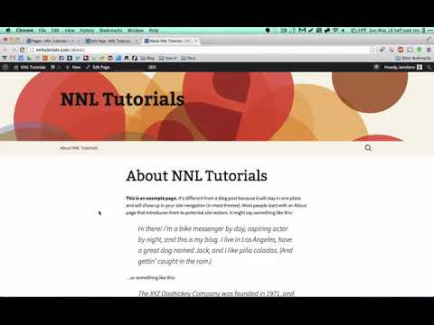 04 Creating new Wordpress pages and posts   and SEO optimizing everything
