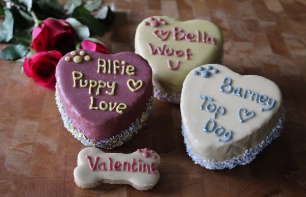 a Valentines Day Cake for a dog
