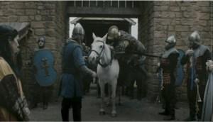 Vikings Shield