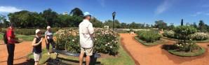 VIPTOURSBA - Rose Garden