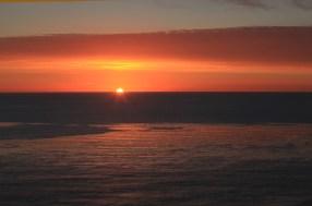 Kelp Forest Sunset