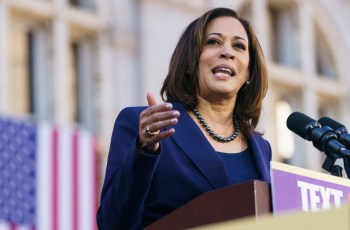 What Kamala Harris' record says about major AI policy issues