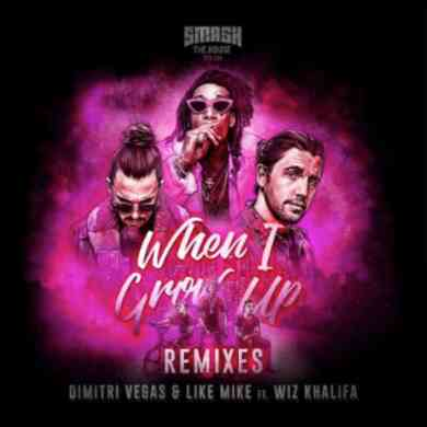 Dimitri Vegas & Like Mike's When I Grow Up remix package