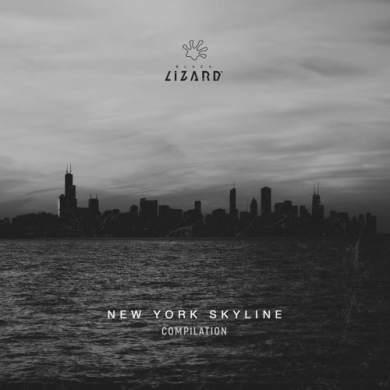 New York Skyline Compilation